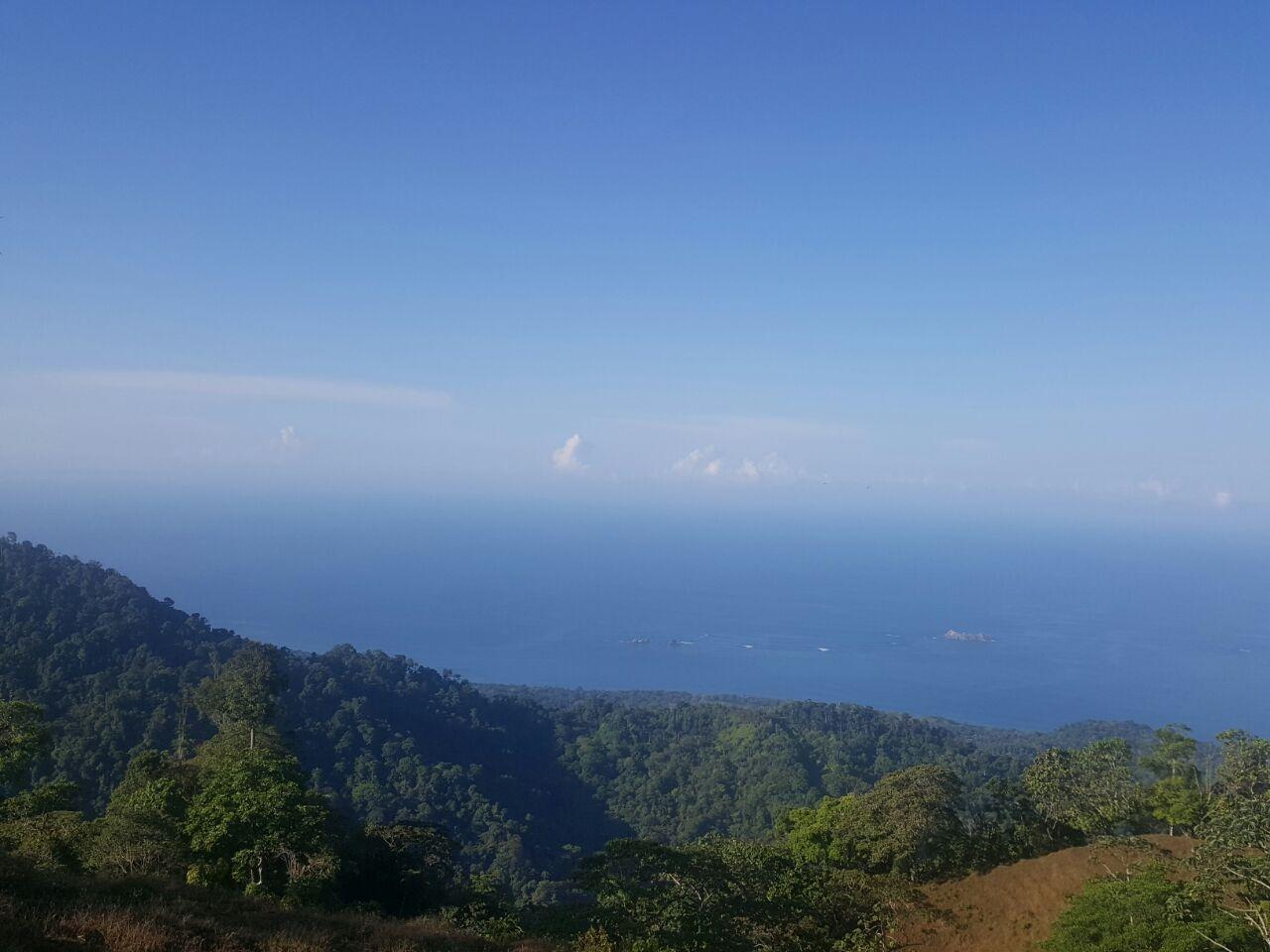 Propiedad en Puntarenas con vista a cola de ballena, a 4 kilometros de la carretera principal