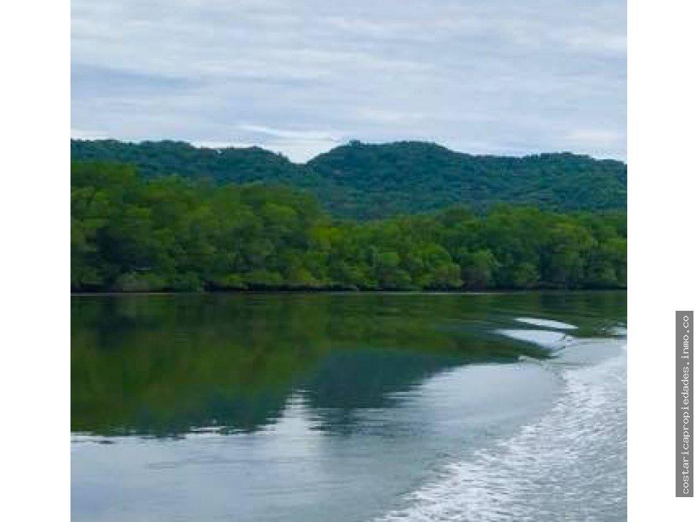 Isla en Puntarenas, hermosa Isla rodeada de Manglar en el Golfo de Nicoya