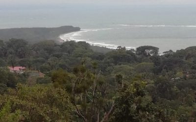 Puntarenas Bahia Ballena