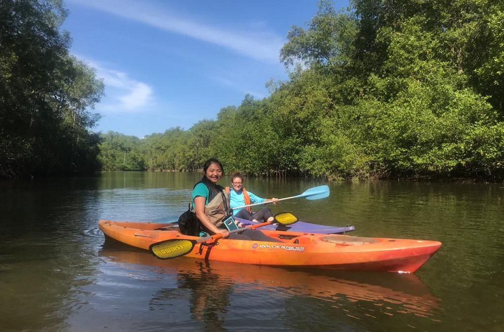 Tour de manglar Puntarenas Matapalo