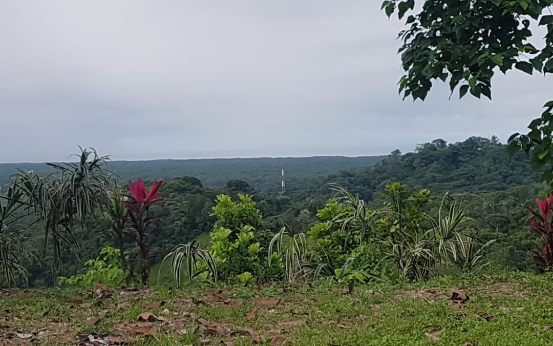 Puntarenas Sanbuenas